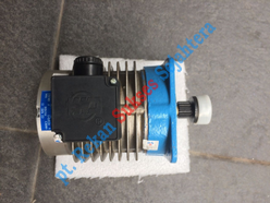 Brake Motor HYUNDAI Moving Walk Type Vertical